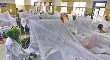 ঢাকায় নতুন করে শনাক্ত হয়েছে ১০৪ জন ডেঙ্গু রোগী