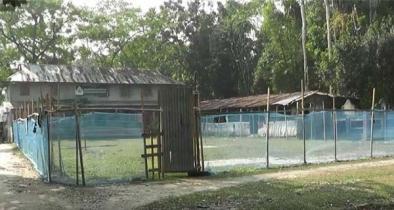 শিক্ষা প্রতিষ্ঠানের জায়গা দখল করে খামার বিএনপি নেতার